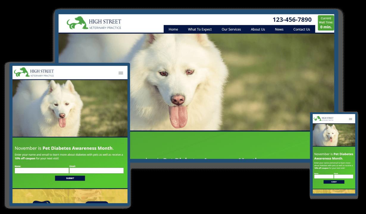high-street-vet-practice-full-website-design-mobile-responsive-chestertown-md